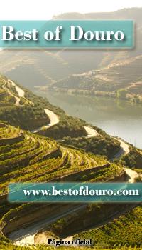 Gastronomia Douro